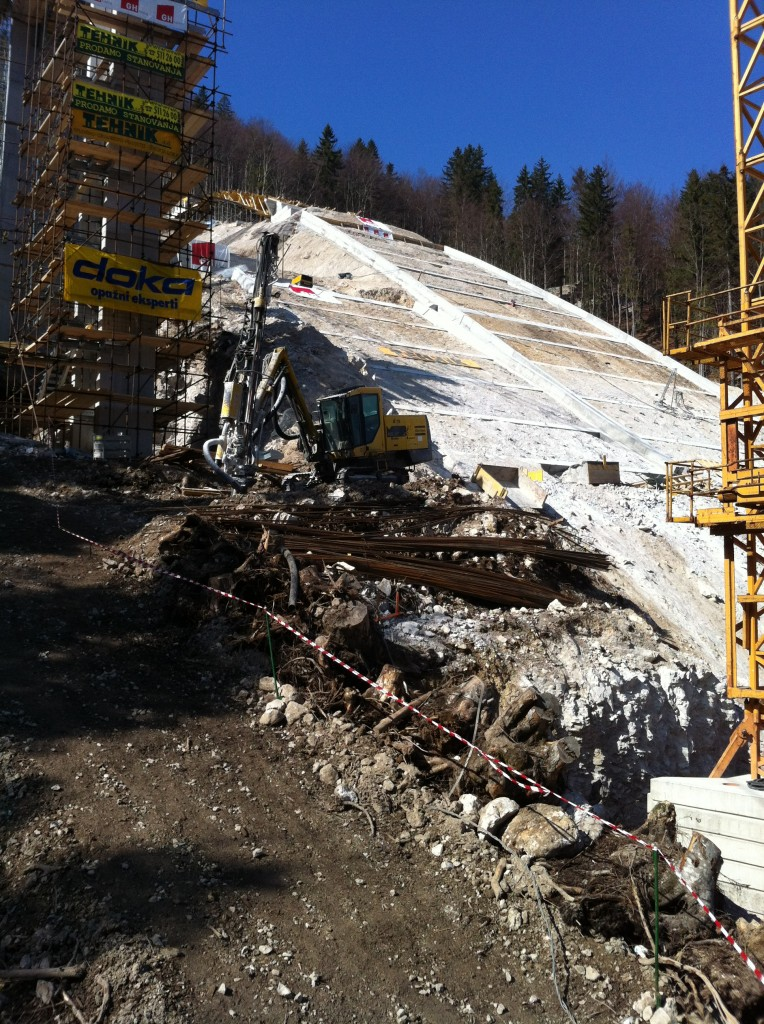 Planica's baby sibling